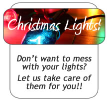 Residential Commercial We Supply Lights Timers Cords